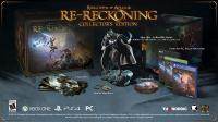 Kingdoms of Amalur Re-Reckoning КОЛЛЕКЦИОННОЕ ИЗДАНИЕ [Playstsation 4]