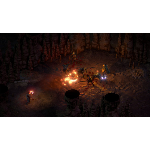 Pillars of Eternity II: Deadfire - Ultimate Edition[PLAY STATION 4]